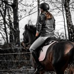 Top Tips for Novice Horse Riders
