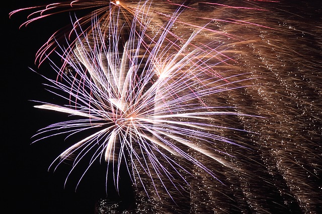 Top Tips for Your Pet on Firework Night