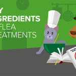 5 key facts about active ingredients in flea treatments