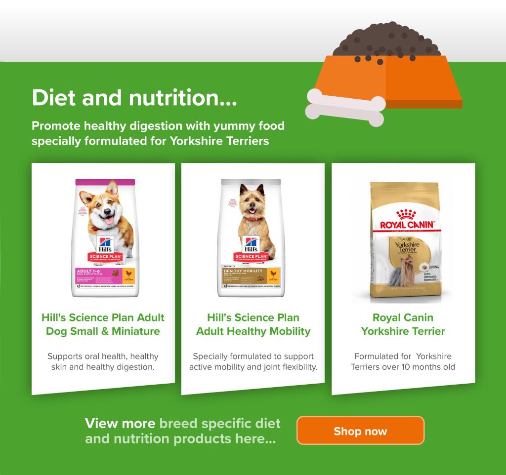 Yorkshire Terrier_Diet