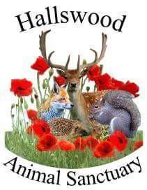 Hallswood