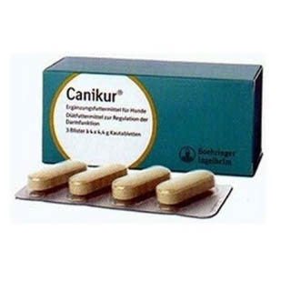 Canikur Tablets Pack of 12 on Animed Direct