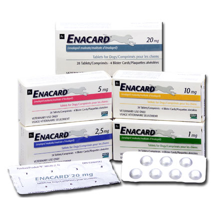 Enacard 20mg Tablet on Animed Direct