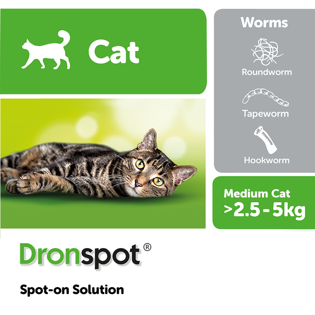 Dronspot Spot-on Solution for Medium Cats - Single Pipette on Animed Direct