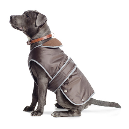 Ancol Stormguard Dog Coat with Chest Protector Chocolate - XLarge on Animed Direct