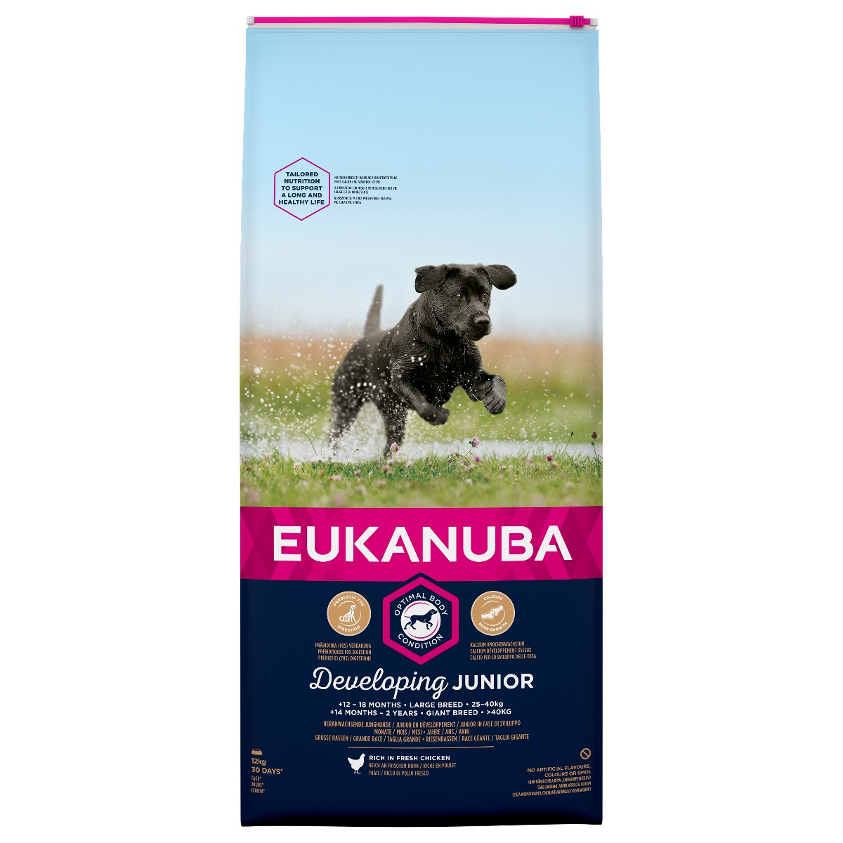 Eukanuba Developing Junior Large Breed Rich in Fresh Chicken Dry 12kg on Animed Direct