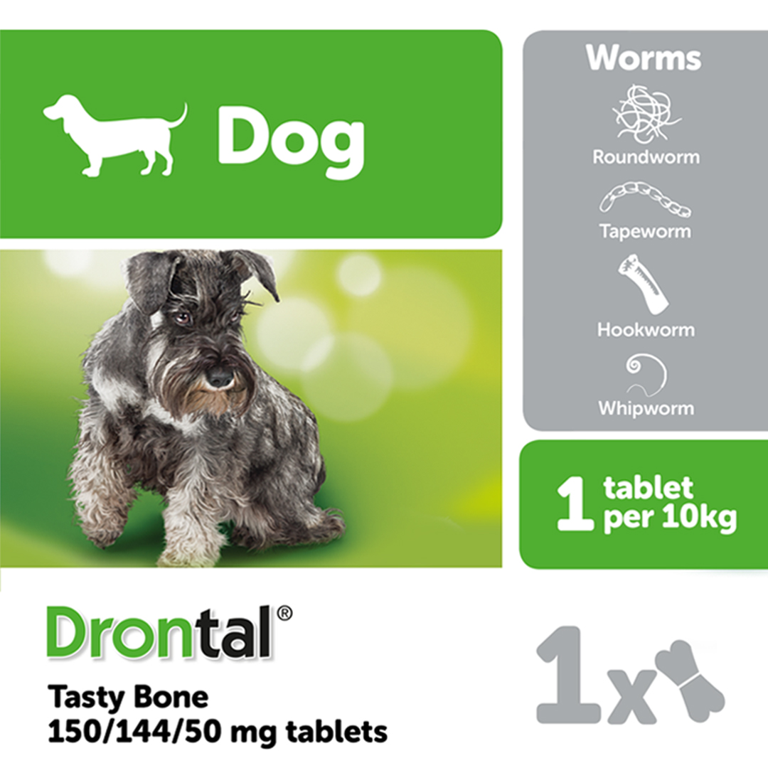 Drontal Tasty Bone Shaped Worming Tablet for Dogs on Animed Direct