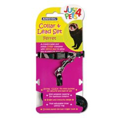 Ancol Ferret Collar and Lead Set