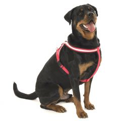 Company Of Animals Comfy Harness - Black