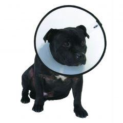 Company Of Animals Smart Collar - Dog