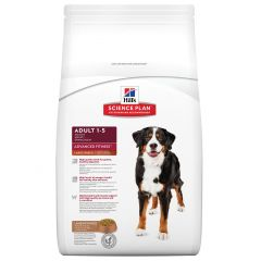 Hills Science Plan Advanced Fitness Adult Dog Large Breed with Lamb & Rice Dry