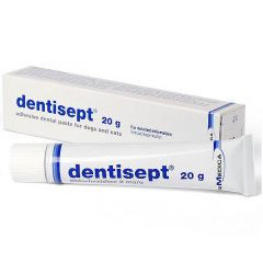 Dentisept Adhesive Dental Paste for Cats and Dogs - 20g