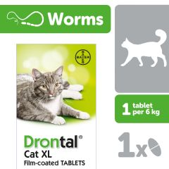 Drontal Cat XL Worming Tablet