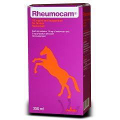 Rheumocam 15mg/ml Oral Suspension for Horses