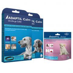 Adaptil (Dog Appeasing Pheromone) Collar