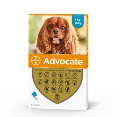 Advocate 100 Spot-On for Medium Dogs (weighing 4 - 10kg)