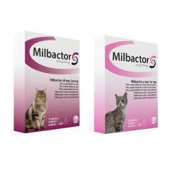 Milbactor Film-coated Tablets for Cats