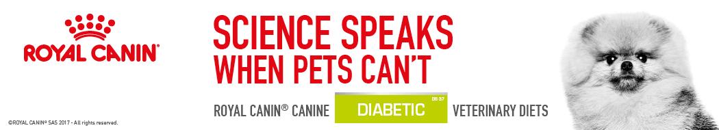 Category dog food Royal Canin Diabetic
