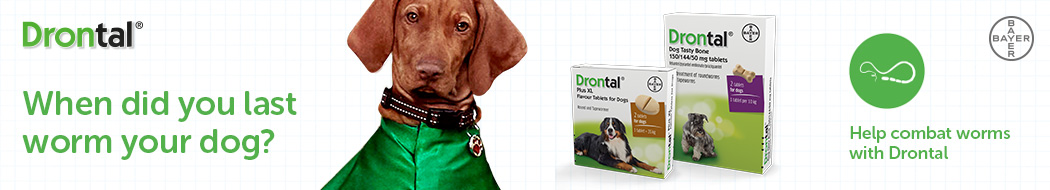 Drontal wormers for dogs