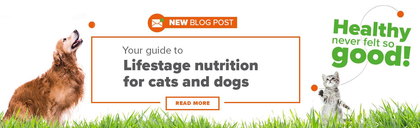 Pet lifestage nutrition