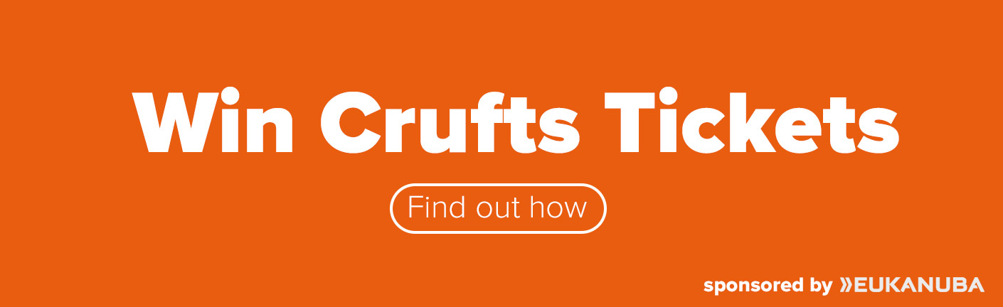 Win tickets to Crufts 2019