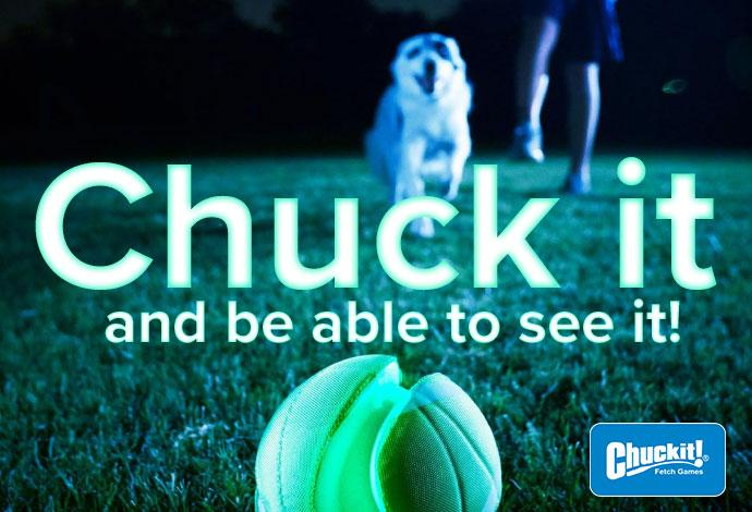 Chuck it Glo toys