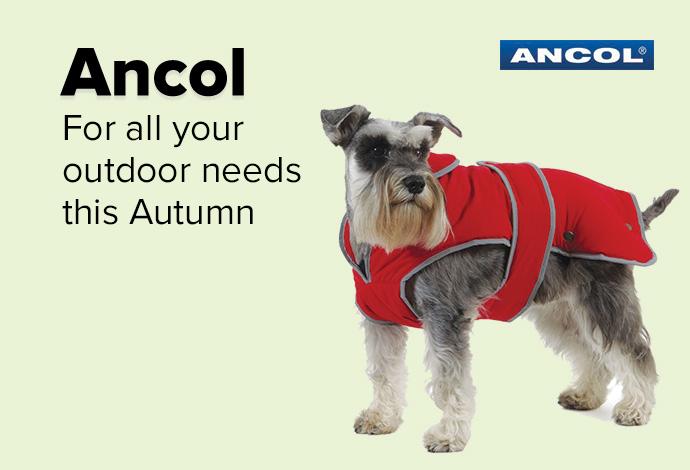 Ancol dog coats