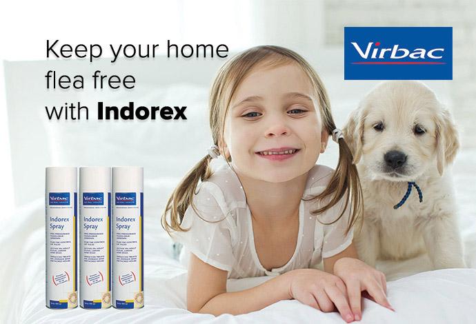 Indorex Household Flea Spray
