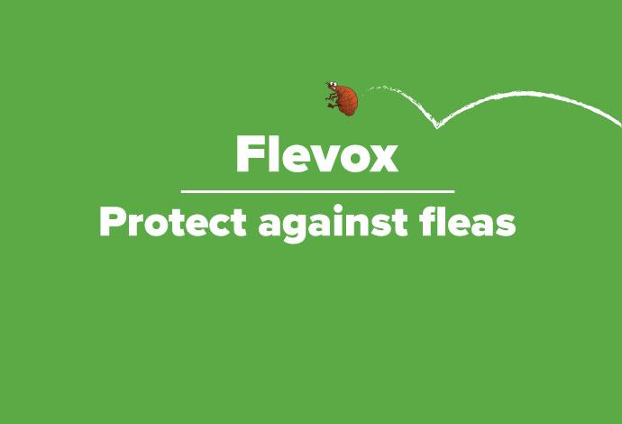 For flea treatment think Flevox