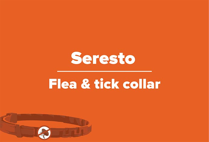 Forget Fleas & Ticks for up to 8 Months with Seresto