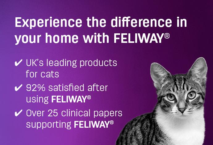 Feliway calming for cats