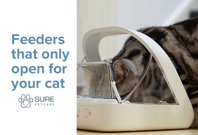 Sure Pet feeder